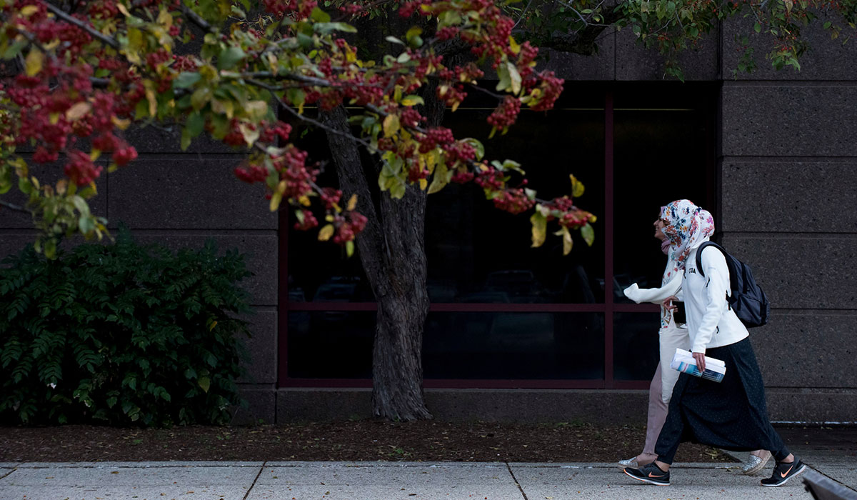 Seventh mosaic photo shows two students walking and talking as they pass Hannan Hall.